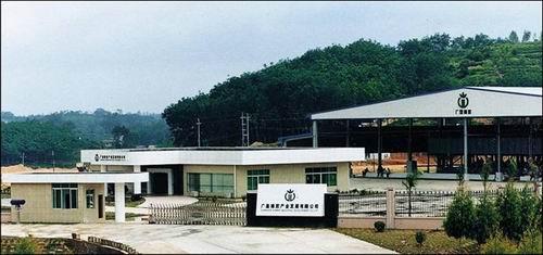 广垦橡胶集团茂名分公司